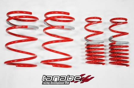 Tanabe - Tanabe DF210 Lowering Springs 02-04 Acura RSX Non Type S (DC5)