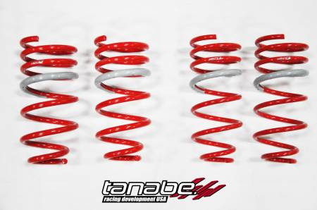 Tanabe - Tanabe DF210 Lowering Springs 95-99 Eagle Talon