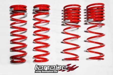 Tanabe - Tanabe DF210 Lowering Springs 96-00 Honda Civic Coupe/Sedan