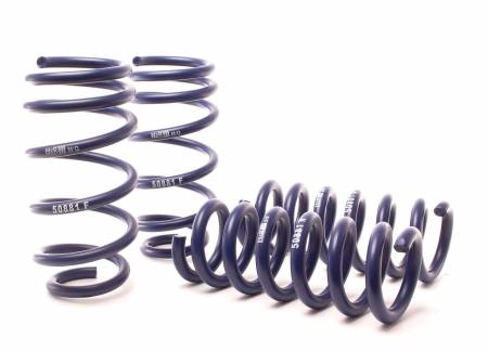 H&R - H&R 11-14 Dodge Charger RT (2WD) RT MAX V8 Sport Spring
