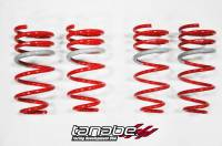 Tanabe - Tanabe DF210 Lowering Springs 95-99 Eagle Talon - Image 1