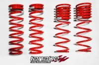 Tanabe - Tanabe DF210 Lowering Springs 96-00 Honda Civic Coupe/Sedan - Image 1