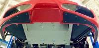 ProTEKt - ProTEKt 04-09 Ferrari 430 Base Custom Fit Front Bumper Skid Plates - Image 3